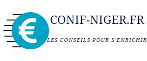 conif-niger.fr